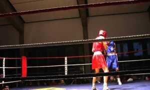 boxe locarno