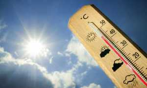 caldo termometro 2