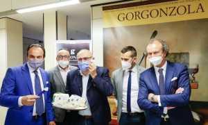 cirio consorzio gorgonzola