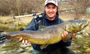 max ghibaudo pesce pesca