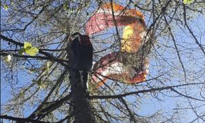 parapendio albero lusentino