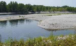 ticino fiume